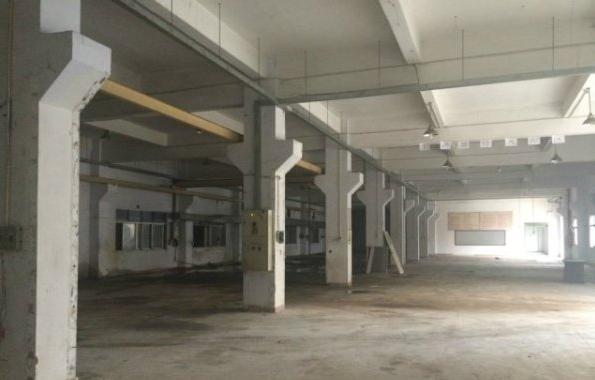 谢岗曹乐格塘村标准厂房一楼招租