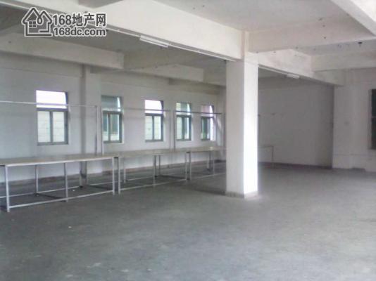黄江板湖标准整栋厂房三层1060平方  租金便宜