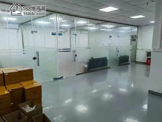 沙井镇新出大工业园带装修厂房招租